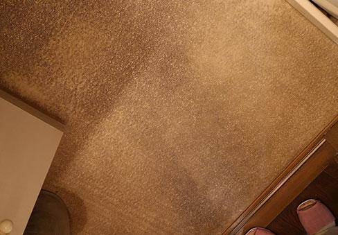 「床クリーニング」の施工前写真