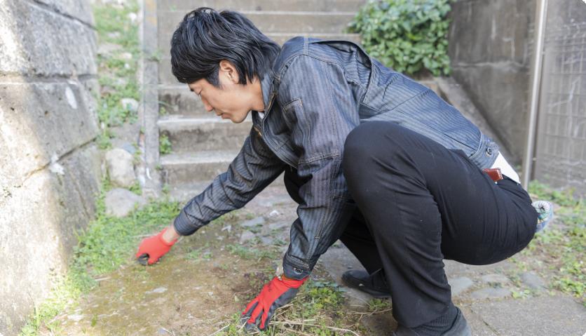「庭作業(剪定、草むしり)」のアイキャッチ画像
